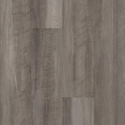 Shaw Floors Resilient Residential Easy Prestige Ostrea 00591_044VF