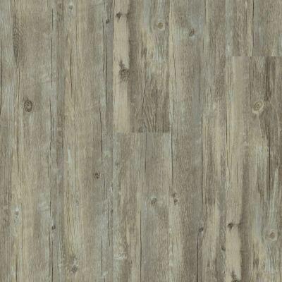 Shaw Floors Resilient Residential Legacy Plus Roma 00507_0458V
