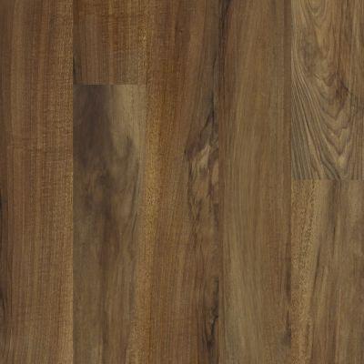 Shaw Floors Vinyl Residential Legacy Plus Verona 00802_0458V