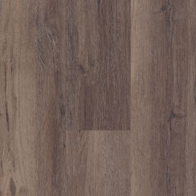 Shaw Floors Resilient Residential Easy Influence HD Dividit 00795_045VF