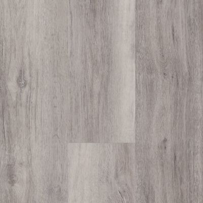 Shaw Floors Resilient Residential Easy Influence HD Vaga 05004_045VF
