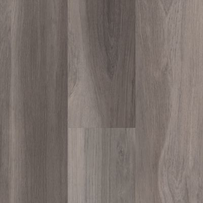 Shaw Floors Resilient Residential Easy Influence HD Ardeo 05009_045VF