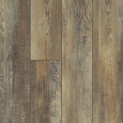 Shaw Floors Resilient Residential Mojave HD Plus Saggio 00159_0461V