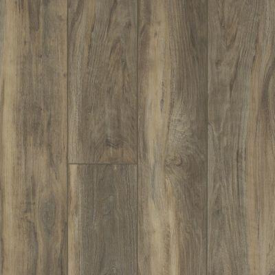 Shaw Floors Vinyl Residential Mojave HD Plus Ardesia 00558_0461V