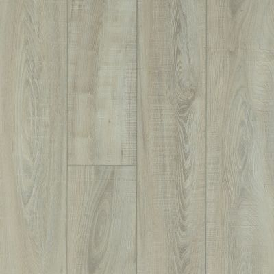 Shaw Floors Resilient Residential Mojave HD Plus Tufo 00589_0461V