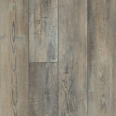 Shaw Floors Resilient Residential Mojave HD Plus Tempesta 00594_0461V