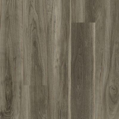 Shaw Floors Vinyl Residential Uptown Now 30 Beaumont St 00568_0462V