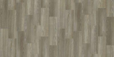 Shaw Floors Resilient Residential Coastal Plainii Footprint 00176_0463V