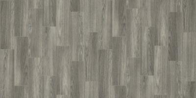 Shaw Floors Resilient Residential Coastal Plainii Nightfall 00548_0463V