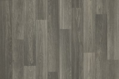 Shaw Floors Resilient Residential Coastal Plainii Trailhead 00733_0463V
