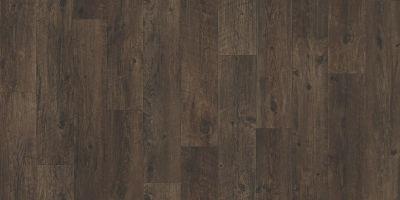 Shaw Floors Resilient Residential Coastal Plainii Wilderness 00736_0463V