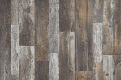Shaw Floors Resilient Residential Coastal Plainii Desert 00746_0463V