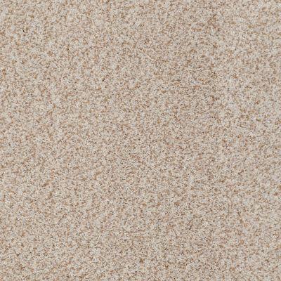 Anderson Tuftex SFA Eastridge Basalt 00165_04SSF