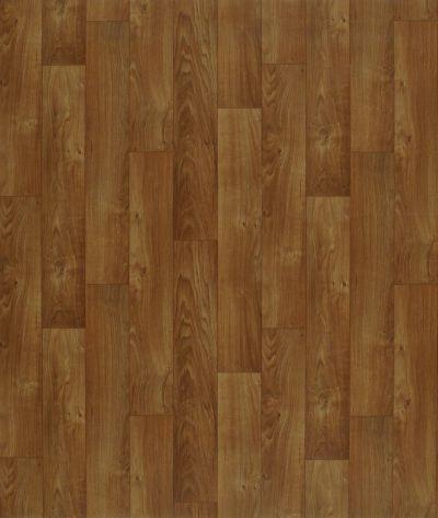 Shaw Floors Vinyl Residential Heartlands Montana 00704_0529V