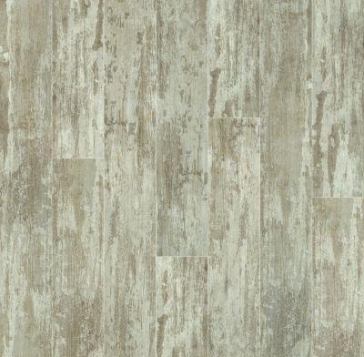 Shaw Floors Resilient Residential Champion Plank Medalist 00130_0544V