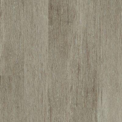 Shaw Floors Resilient Residential Valore Plank Elba 00216_0545V