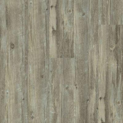 Shaw Floors Vinyl Residential Valore Plank Roma 00507_0545V