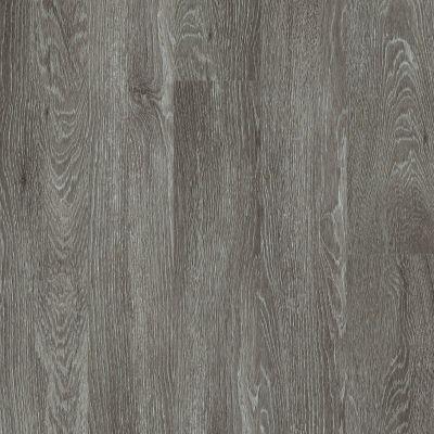 Shaw Floors Resilient Residential Valore Plank Pola 00590_0545V