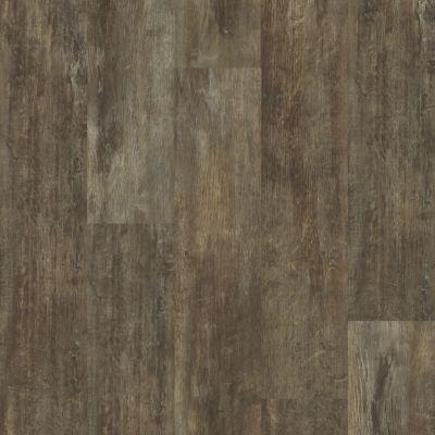 Shaw Floors Resilient Residential Valore Plank Genoa 00773_0545V