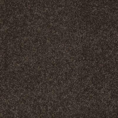 Anderson Tuftex SFA Noticeable II Cocoa Bean 00778_05SSF