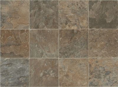 Shaw Floors Vinyl Residential Great Basin Outpost 00602_0611V