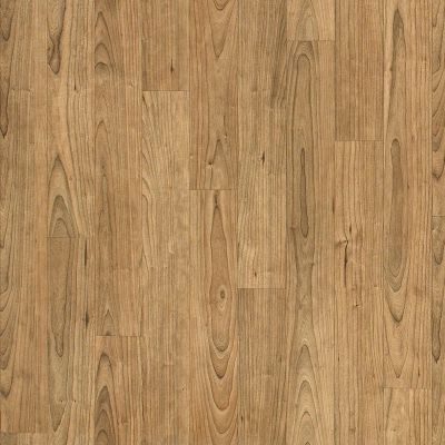 Shaw Floors Vinyl Residential Apollo Lindus 00206_0614V