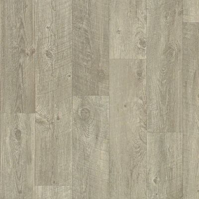 Shaw Floors Resilient Residential Apollo Tricca 00534_0614V