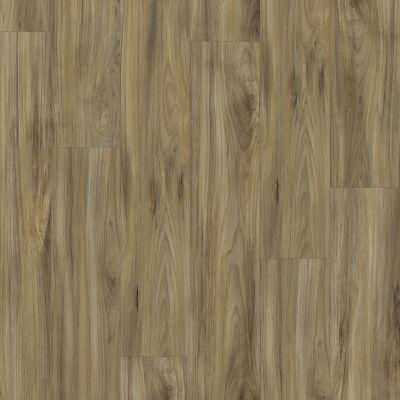 Shaw Floors Resilient Residential Prime Plank Whispering Wood 00405_0616V
