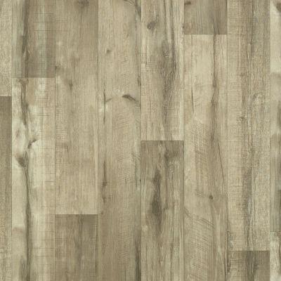 Shaw Floors Resilient Residential Sonoma Cloverdale 00509_0652V