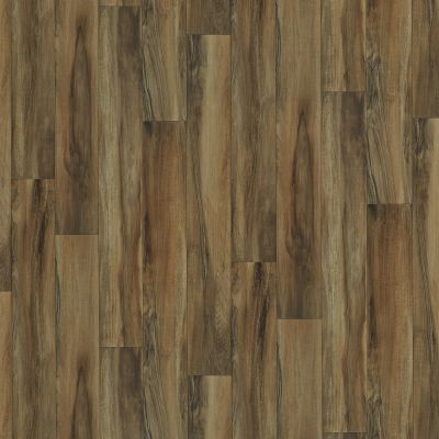 Shaw Floors Resilient Residential Sonoma Guerneville 00603_0652V