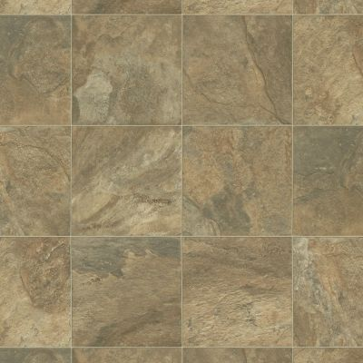 Shaw Floors Resilient Residential Sonoma Santa Rosa 00731_0652V