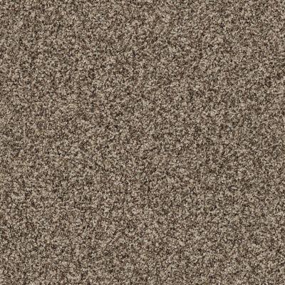 Anderson Tuftex Nfa/Apg Harmonious Sleek Suede 00757_069AG