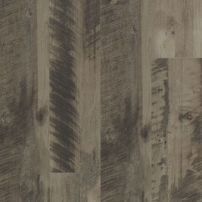 Shaw Floors Resilient Residential Endura Plus Neutral Oak 00562_0736V