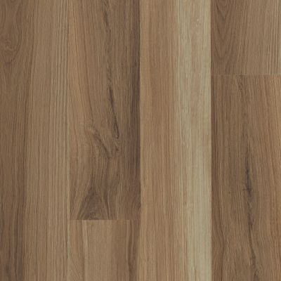 Shaw Floors Resilient Residential Endura Plus Hazel Oak 00762_0736V