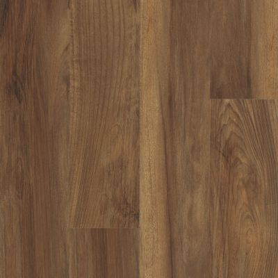 Shaw Floors Resilient Residential Endura 512c Plus Ginger Oak 00802_0736V