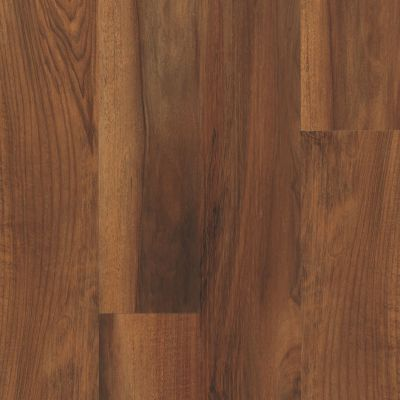 Shaw Floors Resilient Residential Endura Plus Amber Oak 00820_0736V