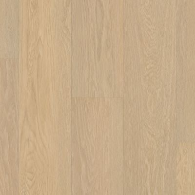 Shaw Floors Resilient Residential Endura Plus Oceanfront 02012_0736V