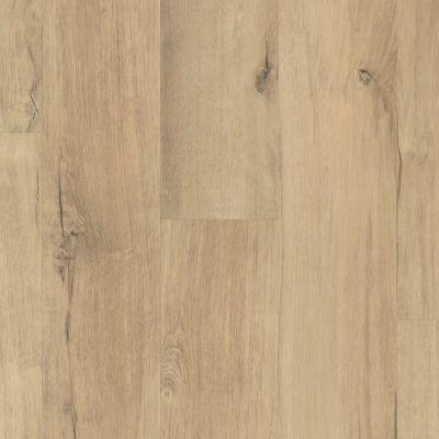 Shaw Floors Resilient Residential Endura Plus Marina 02014_0736V