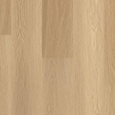 Shaw Floors Resilient Residential Endura Plus Castaway 07087_0736V