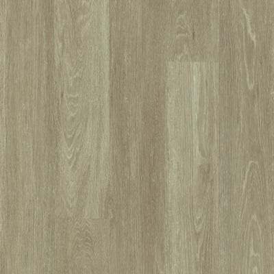 Shaw Floors Vinyl Residential All American Patriot 00775_0799V