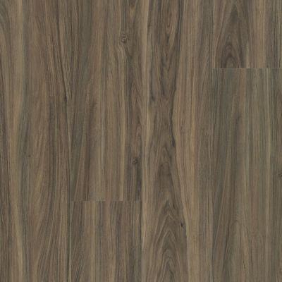 Shaw Floors Resilient Residential Endura 512g Plus Cinnamon Walnut 00150_0802V