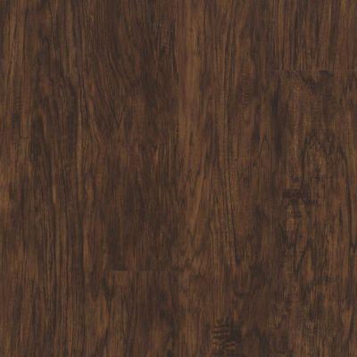 Shaw Floors Resilient Residential Endura 512g Plus Sepia Oak 00634_0802V