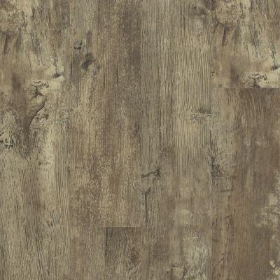 Shaw Floors Resilient Residential Endura 512g Plus Jade Oak 00728_0802V