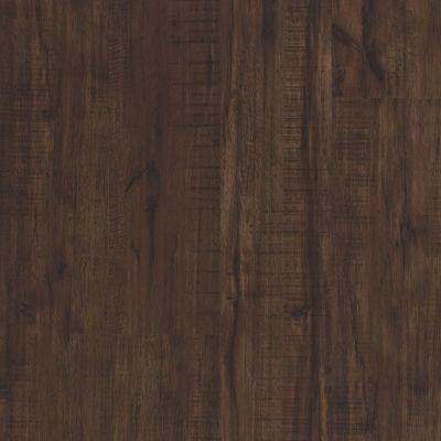 Shaw Floors Resilient Residential Endura 512g Plus Umber Oak 00734_0802V