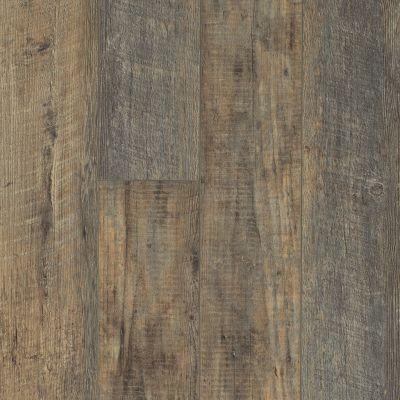 Shaw Floors Resilient Residential Tivoli Plus Pino 00146_0845V