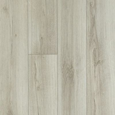 Shaw Floors Resilient Residential Tivoli Plus Pecorino 00157_0845V