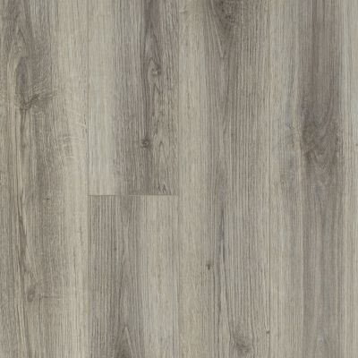 Shaw Floors Resilient Residential Tivoli Plus Lince 00571_0845V