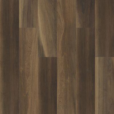 Shaw Floors Resilient Residential Cathedral Oak 720c Plus Ravine Oak 00798_0866V