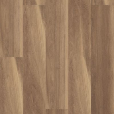 Shaw Floors Resilient Residential Cathedral Oak 720c Plus Buff Oak 07058_0866V