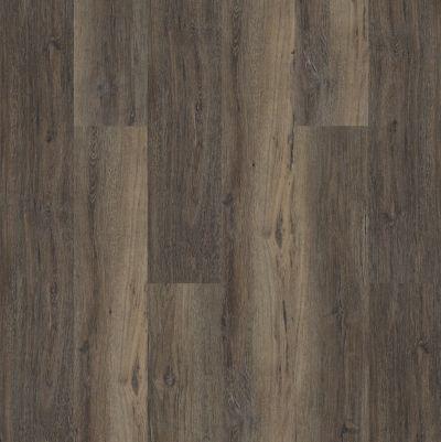 Shaw Floors Resilient Residential Heritage Oak 720c Plus Upland Oak 00795_0867V